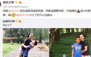 王琳遭网友不雅留言 怒斥:你这吃SHI长大的智障