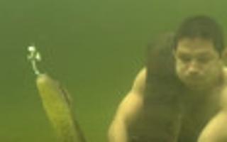 男子抱巨蟒玩水下潜泳