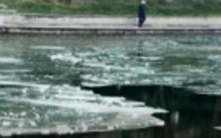 清华校园两名学生落水1人溺亡