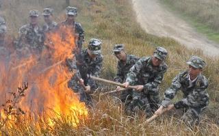 大祥区武装部开展民兵森林防火训练