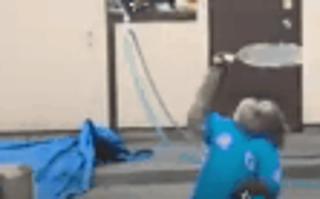 6岁猴子打网球视频走红网络