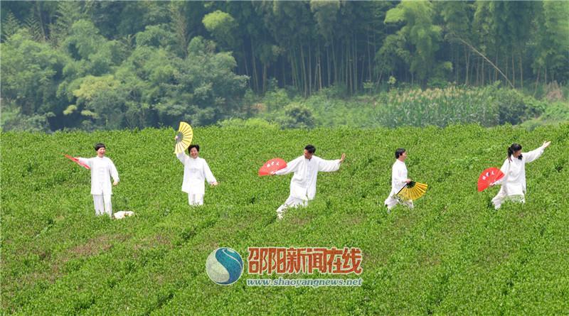 """""""茶客""""微信带热茶客旅游"""