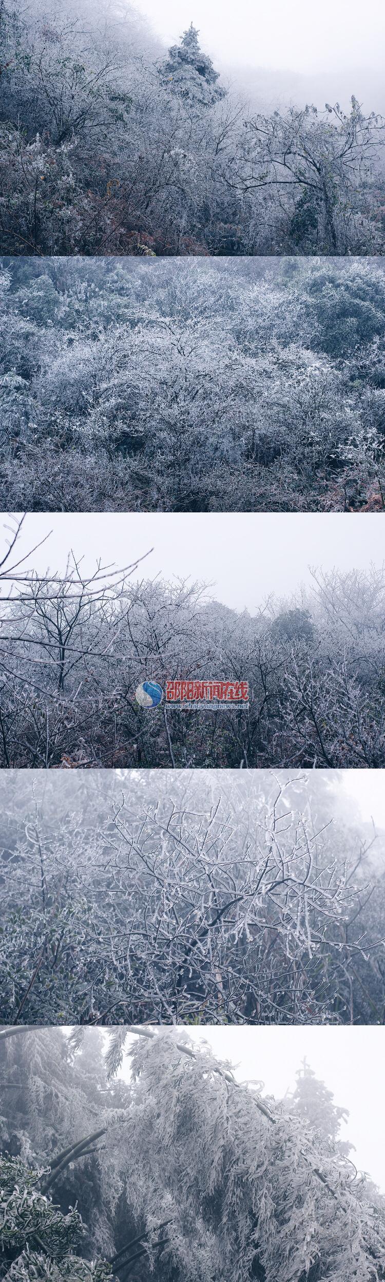 新邵龙山雾凇图