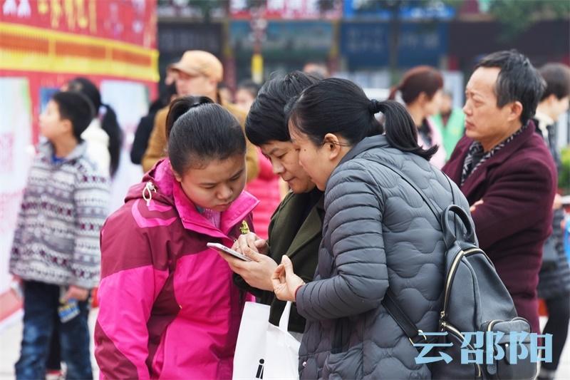市民用手机百度想从中找到答案。 谢冰  摄.jpg