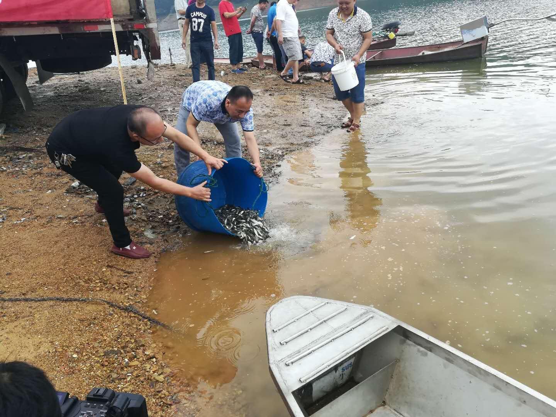 隆回县2018年渔业资源增殖放流活动在六都寨水库举行