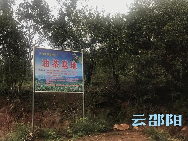 """邵阳县四千""""产业助理""""助产业帮脱贫"""