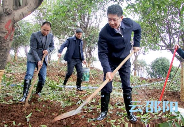 刘事青调研创森工作:为经济社会高质量发展注入绿色动能