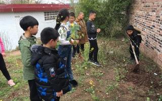 北塔区利江乔梁希望小学开展植树活动