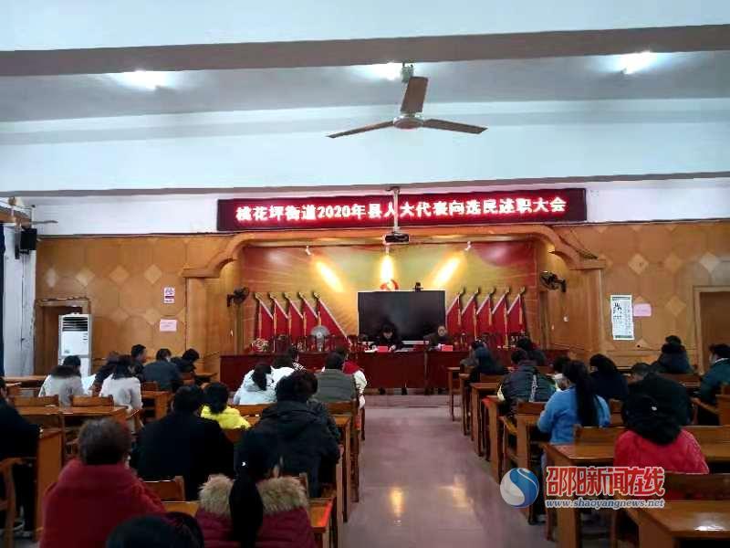 隆回县桃花坪街道召开2020年县人大代表向选民述职大会